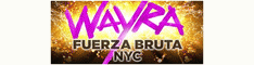Fuerza Bruta Coupon