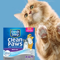 graphic relating to Fresh Step Coupon Printable named Conserve $1 upon contemporary New Step® Fresh new Paws™ very low monitoring clutter