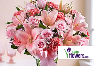 Coupon codes and free promotional codes for 1000s of stores shop valentines day arrangements fandeluxe Image collections