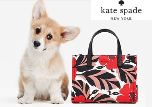 Exclusive Kate Spade