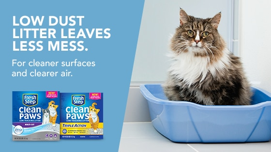 picture regarding Fresh Step Coupon Printable identified as Help save $1 upon refreshing Fresh new Step® Refreshing Paws™ lower monitoring clutter