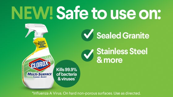 image about Viva Printable Coupons known as Help you save up towards $6.75 upon Clorox® products and solutions, Viva® and further