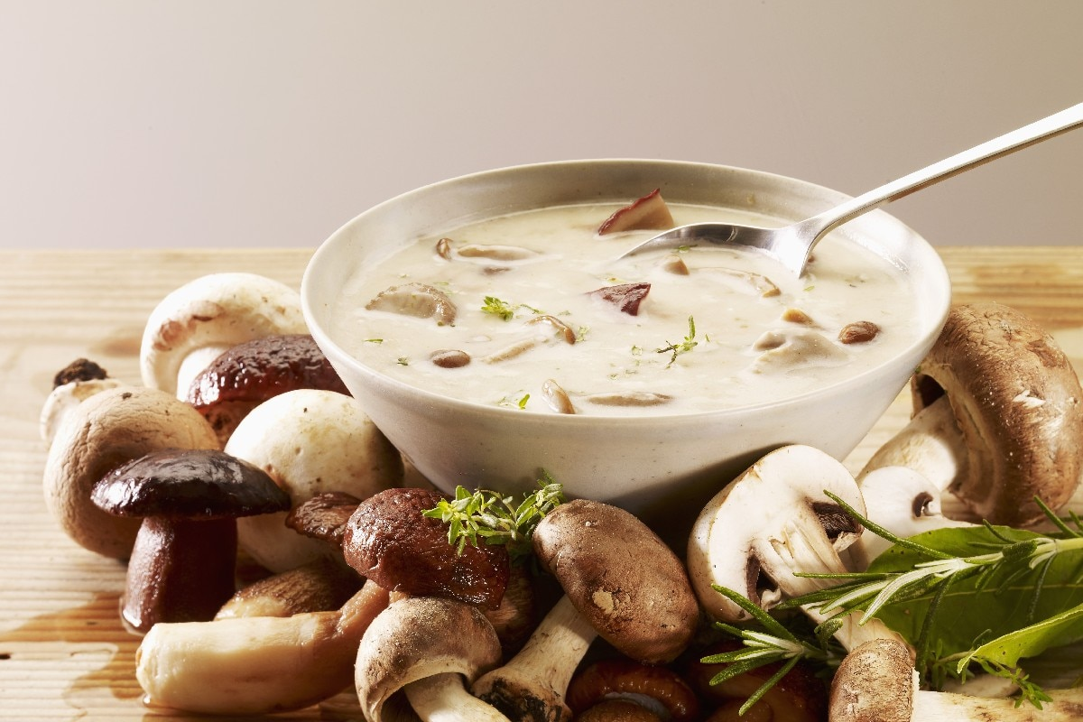 Cream of Wild Mushroom Soup - KitchMe
