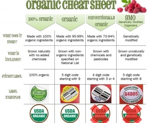 Organic Cheat Sheet