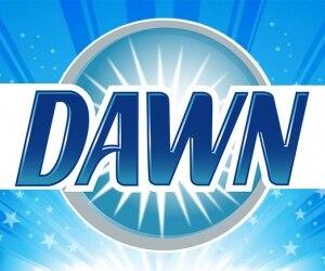 dawn-logo