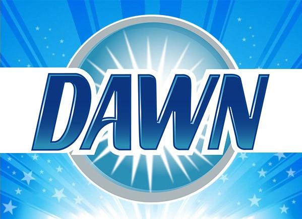 Six Things To Do With Dawn Dishwashing Liquid Besides