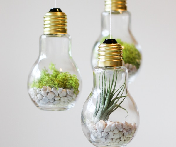 14 Brilliant Ways To Reuse Old Light Bulbs Thegoodstuff