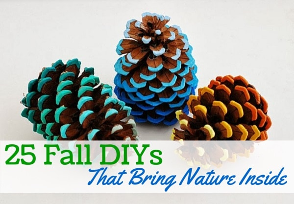 25 fall diys to bring nature inside