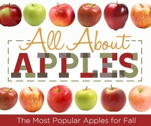 All About Apples: Best Types of Apples For Your Recipes