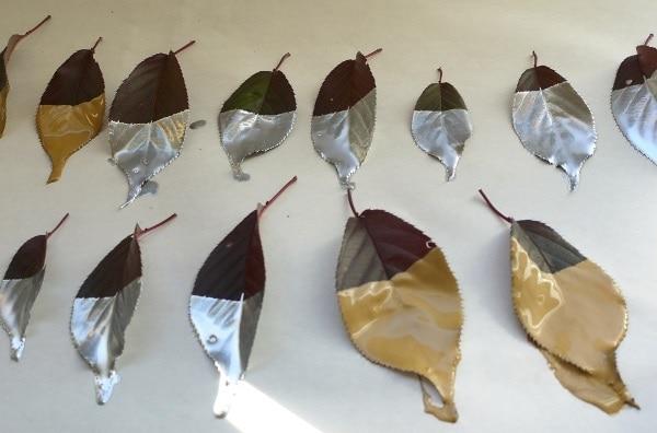 Metallic Dipped Leaves
