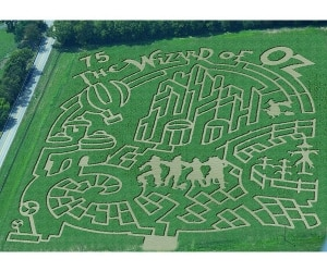 A Corn Maze For Every State: 50 Must-Visit Corn Mazes