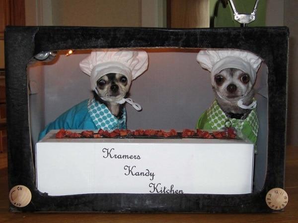 top puppy chef