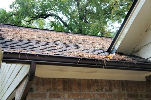 Clean Out the Gutters