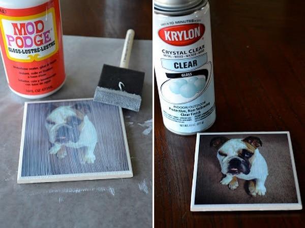 Personalized Dog Coaster