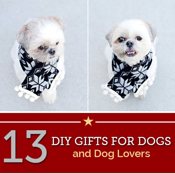 diy gifts for dogs