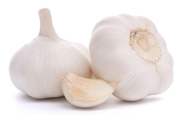 immunity garlic