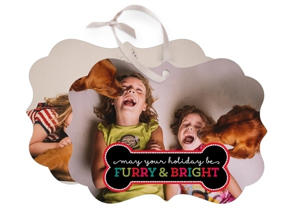 shutterfly custom dog gifts