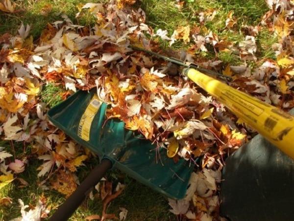snow shovel leaf rake