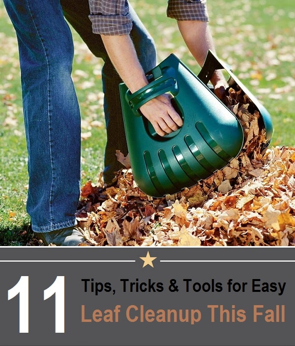 tips tricks and tools for leaf cleanup this fall