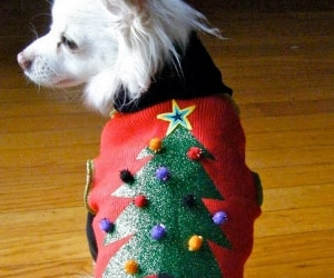 10 DIY Ugly Christmas Sweaters for the Holidays