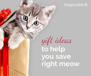 Holiday 2014 Sweepstakes: Gift Ideas to Help You Save