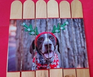 Upcycle Holiday Cards featured image
