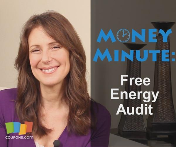 free energy audit 600x500