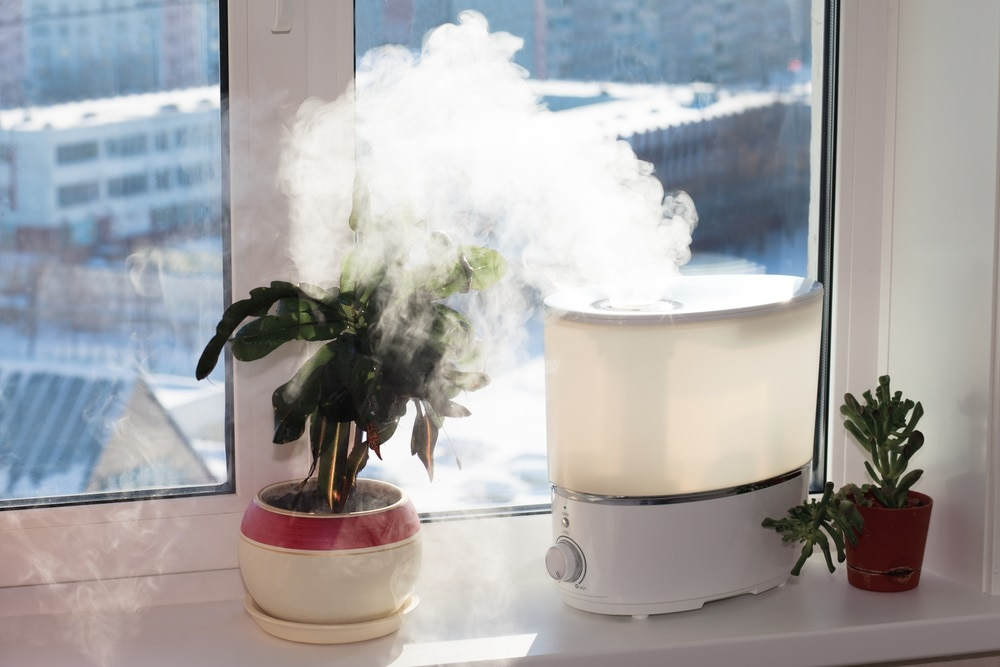 Invest in a Humidifier