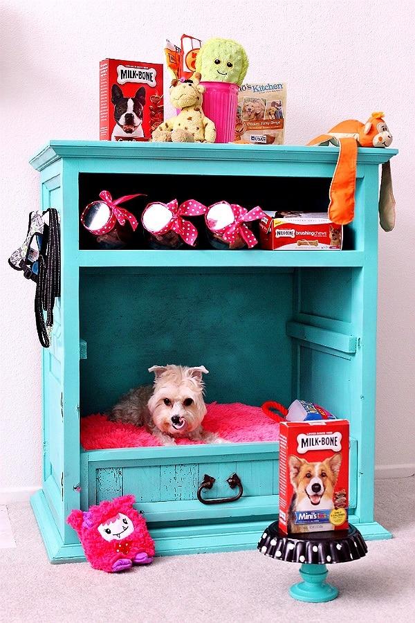 thrift store dog dresser