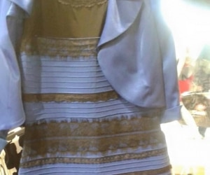 The Dress and More Color Optical Illusions