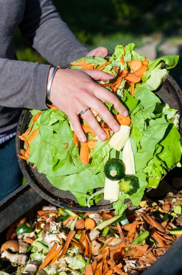 Everything You Need to Know About How to Compost | thegoodstuff