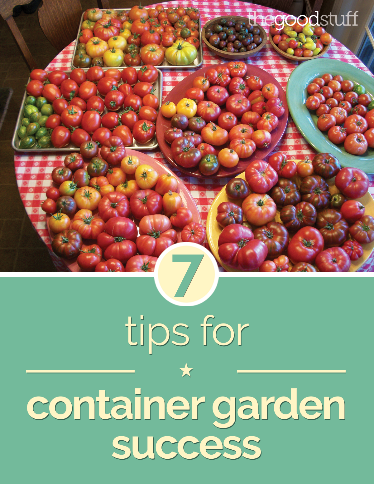 7 Tips for Container Garden Success | thegoodstuff