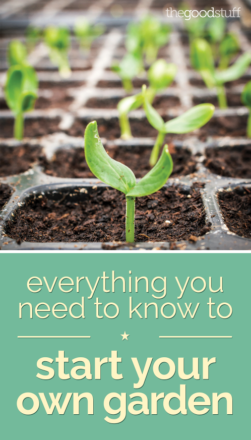 How To Start Landscaping Your Yard : How to start your own garden starting a vegetable