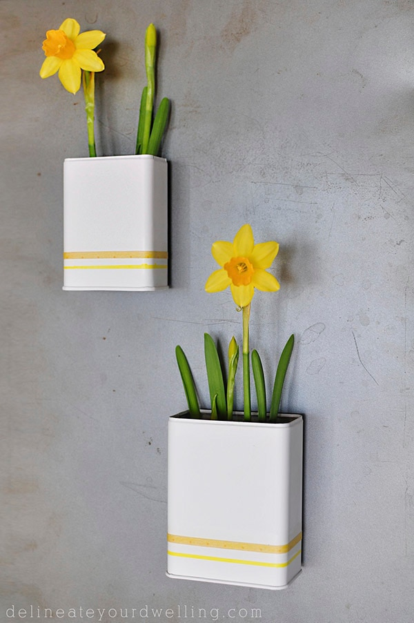 12. magnetic daffodil planters