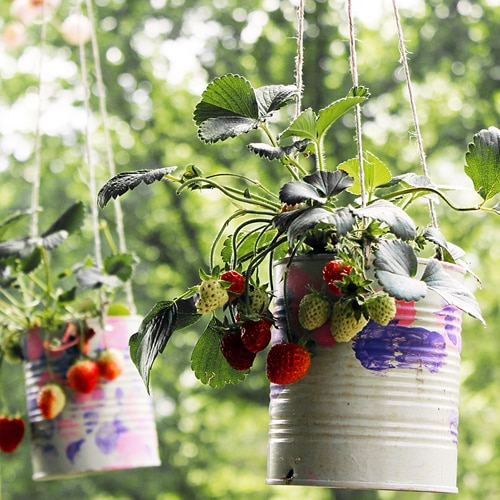 19. hanging strawberry planter