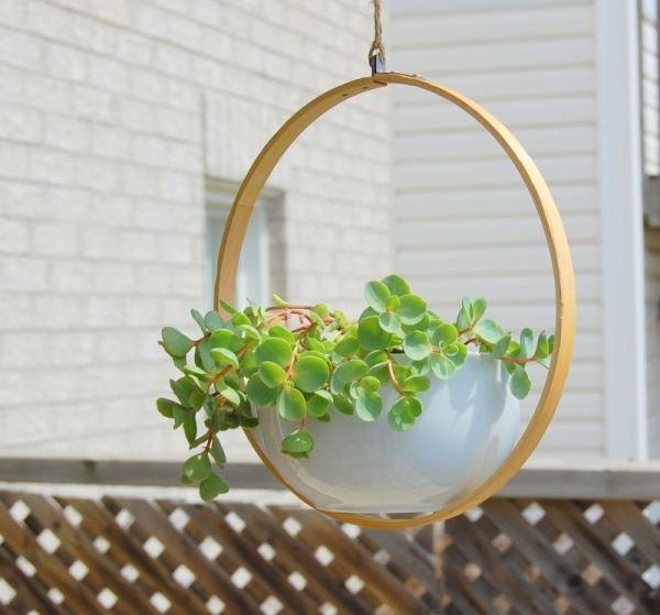 23. embroidery hoop hanging plant