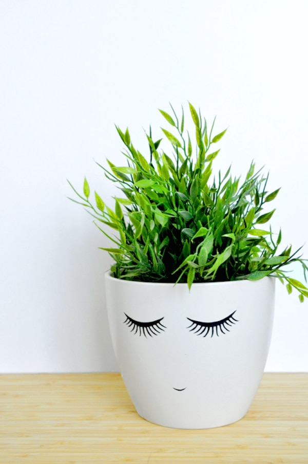 3. shy face potted plant