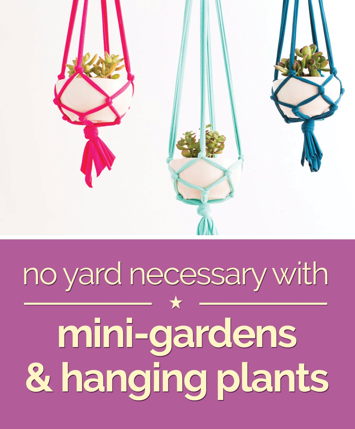 No Yard Necessary with Mini-Gardens & Hanging Plants | thegoodstuff