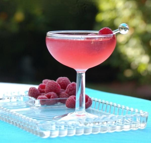 Cheers! 5 Quality & Affordable Costco Spirits: Kirkland Gin Recipe   thegoodstuff