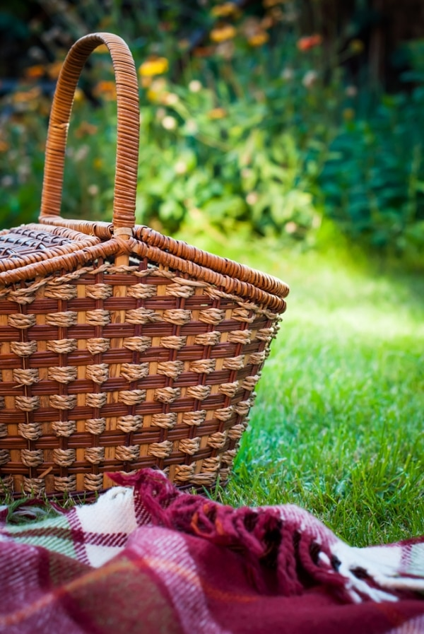 perfect-picnic-basket_01