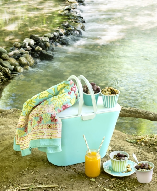 perfect-picnic-basket_02