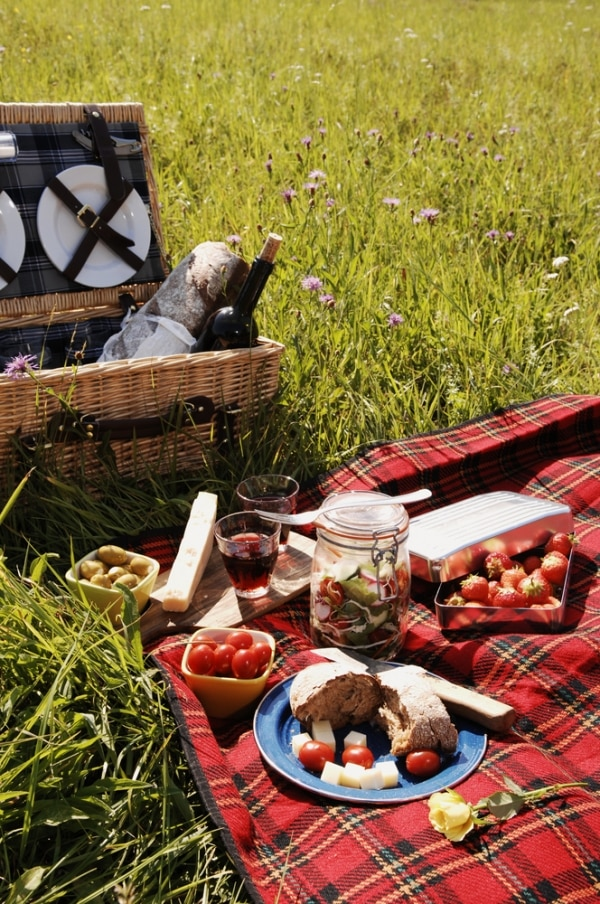 perfect-picnic-basket_03