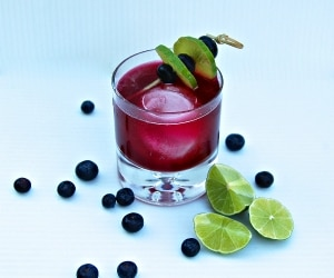 blueberry-cocktail-recipes_feat