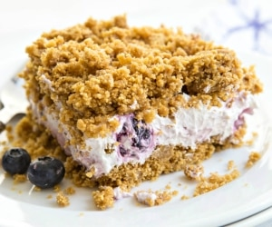 blueberry-no-bake-cake_feat