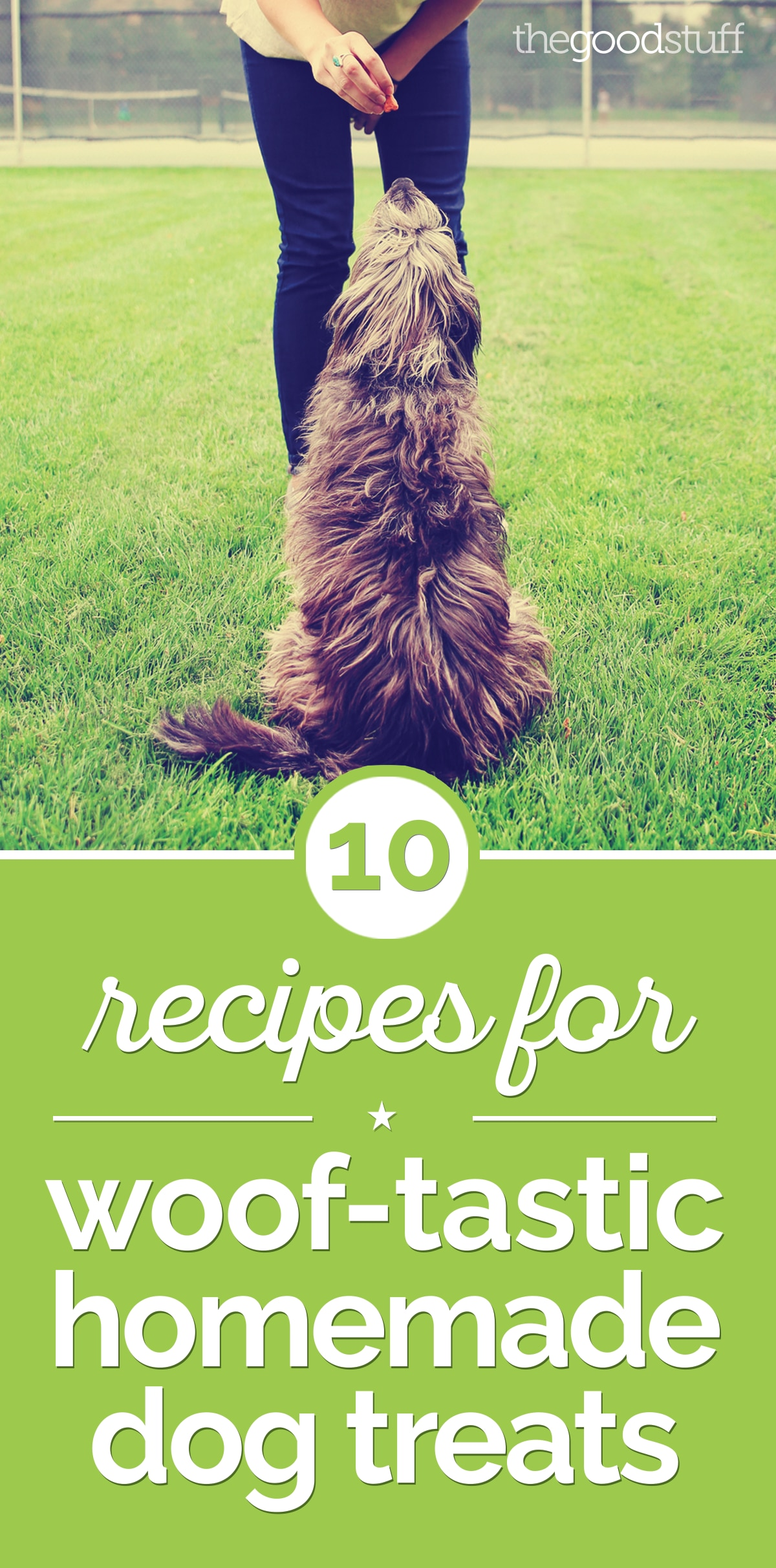 10 Recipes for Woof-Tastic Homemade Dog Treats | thegoodstuff