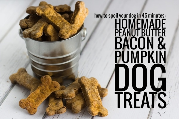 Homemade Peanut Butter Bacon Dog Treats Ingredients: 3 pieces of bacon, precooked and chopped 1 egg ½ cup peanut butter ¼ cup beef or chicken broth 1. You can make these Homemade Peanut Butter Bacon Dog Treats so easily at home! And the ingredients are so simple! Just make extra bacon so you can have some, too!