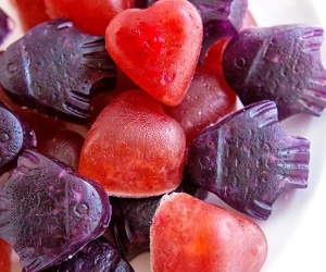 homemade-fruit-snacks_feat