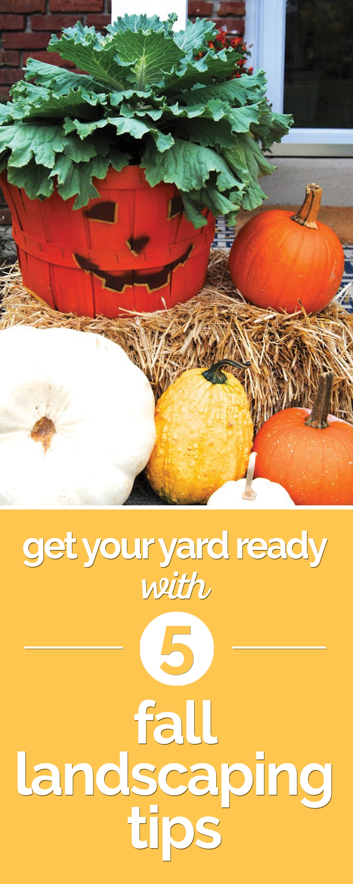 Get Your Yard Ready with 8 Fall Landscaping Tips | thegoodstuff