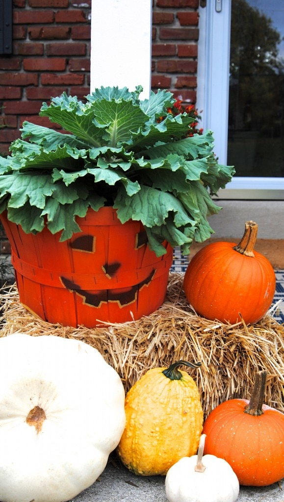 fall-landscaping-tips_11