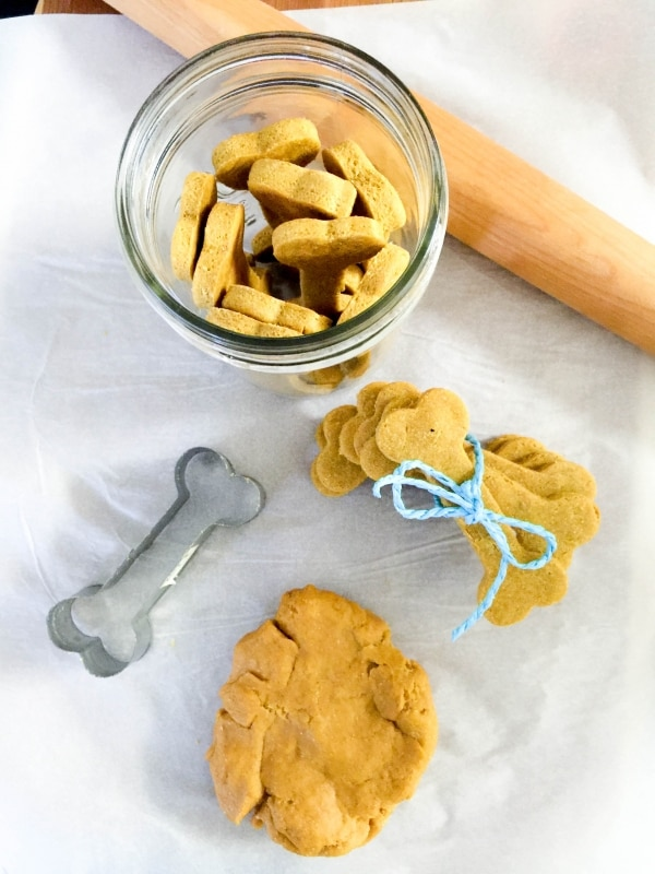 pumpkin-dog-treats_06